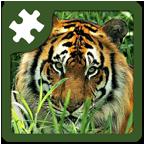 野生动物益智拼图
