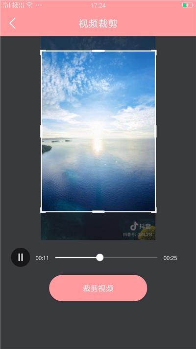 抖音视频倒放器 v1.0